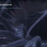 Científicos captan impresionantes imágenes de criaturas de aguas profundas frente a las costas de Puerto Rico.