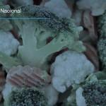 Congelan y exportan verduras mexicanas